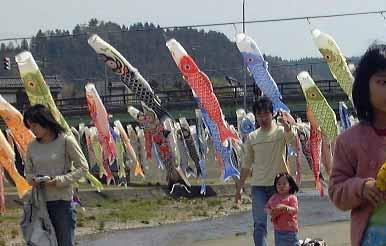 may_fish.jpg